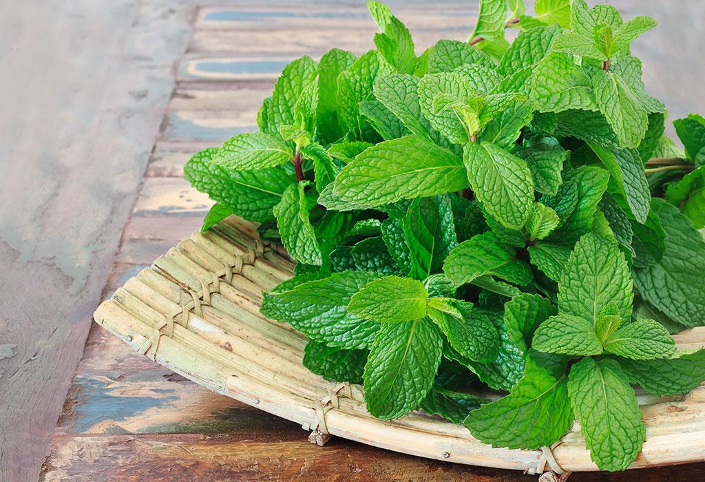 Mint treatment